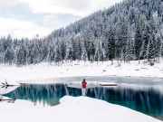 Person standing beside body of water surrounded by snow field near trees | Photo: Cristina Munteanu via Unsplash