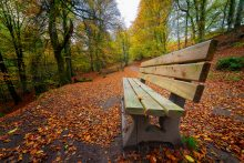 autumnal resting place