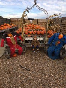 Jacob On the Pumkin Farm