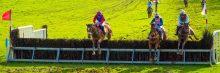 Horse Jumping Sideways!