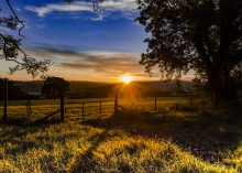 Co Down Sunrise