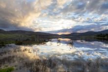 Reflections on Clatteringshaws